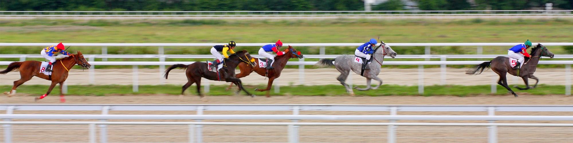 Jockey Equipment   Lexington, KY - KY Jockey Silks